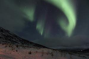 Northern lights tours during winter