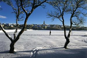 Winter snow at Reykjavík city pond (add extra days to tour)