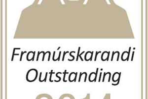 Outstanding accommodation - Staff reward of Icelandic Farm Holidays