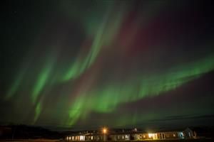 Northern lights dancing in the sky at Hotel Eldhestar