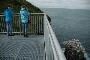 Bird watching at Skoruvíkurbjarg bird cliffs