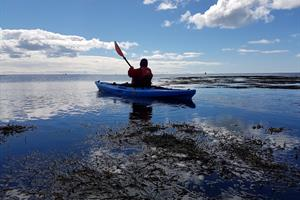 Enjoy paddling on a sit-on-top kayak by the shore