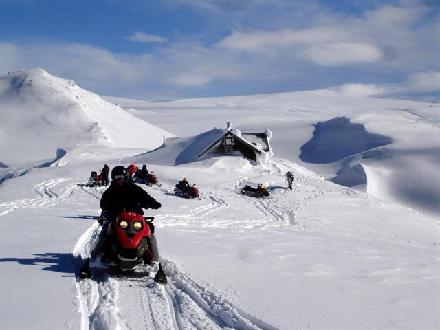 Join a snowmobile tour