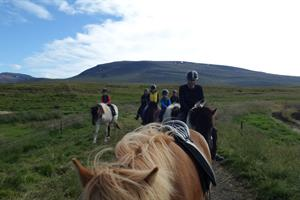 Horse riding tours are available at Stóra-Ásgeirsá