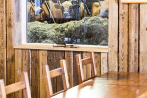 Restaurant table in a Cowshed in Iceland