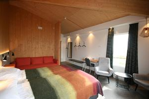 Double / twin room with mountain view