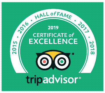 TripAdvisor Certificate of Excellence 2019 to Hey Iceland.jpg