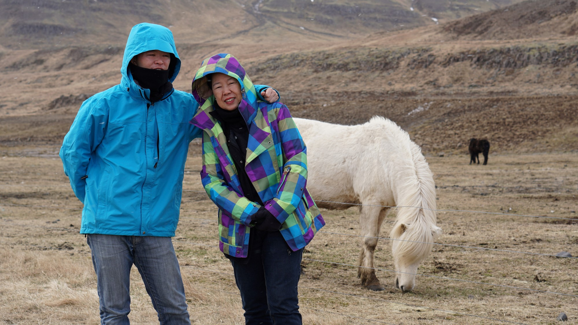 Mother and son with Icelandic horse