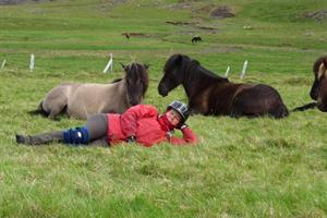 Relaxing with the horses after a horse riding tour