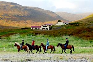 Riding the Icelandic horse at Heydalur