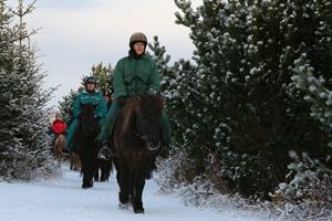 Horse riding in the winter with Íshestar