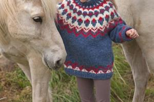 Connecting with the Icelandic horse