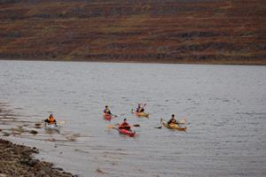Kayak tour from Heydalur