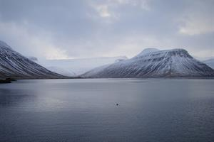 Mountains of the Westfjords