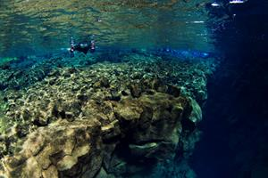 The clear water offers up to 100 meters of underwater visability