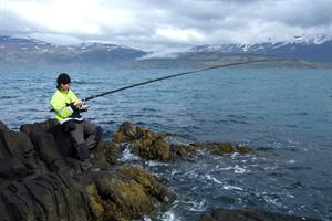 Sea angling from the rocky shore