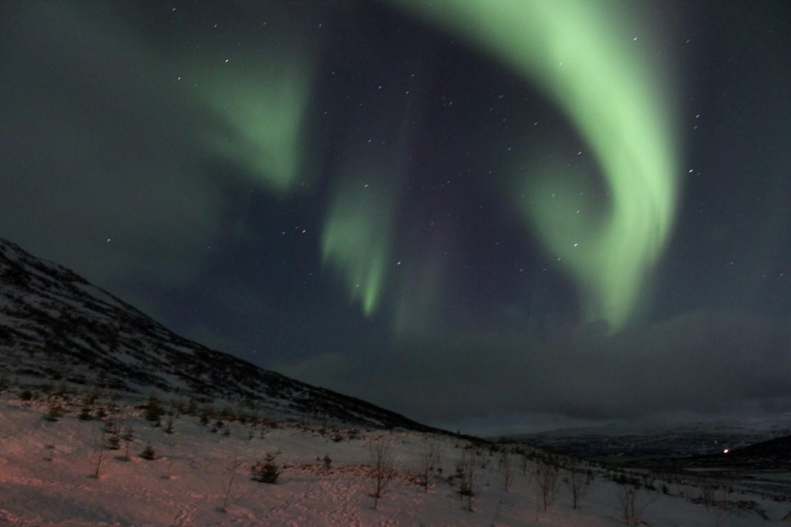 westfjords iceland northern lights - photo #7