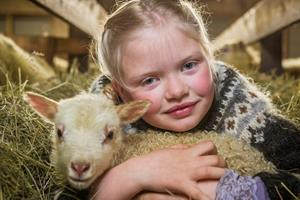Hug a Lamb - Experience the Lambing Season