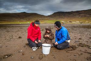 Wild Mussel Picking Tour - Mussel picking is suitable for children as well as adults