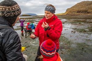 Wild Mussel Picking Tour - During mussel picking, you will learn about the coastal wildlife