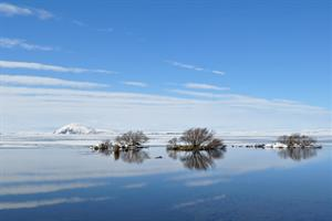 Winter at Lake Mývatn.